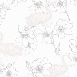 NO LIMITS 640818 Wallpaper